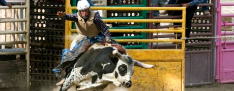 A young man rides a bull in high school rodeo.